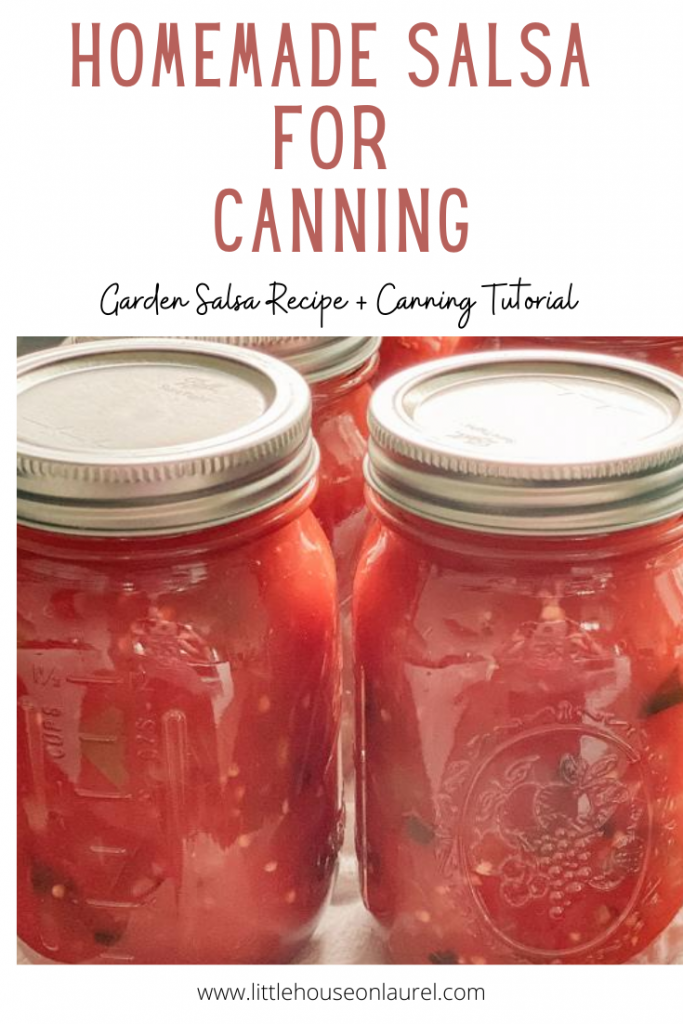 garden salsa produce canned home canning tomatoes onion pepper jalapeno