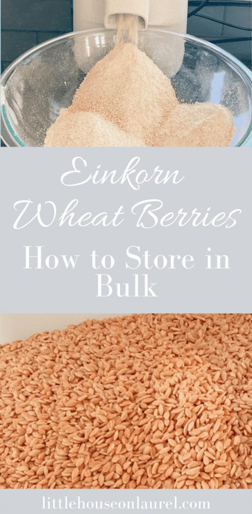 einkorn wheat berries bulk