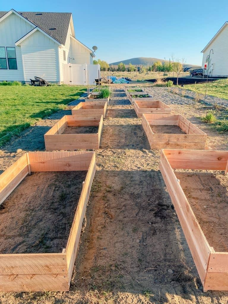 garden gardening raised bed cedar