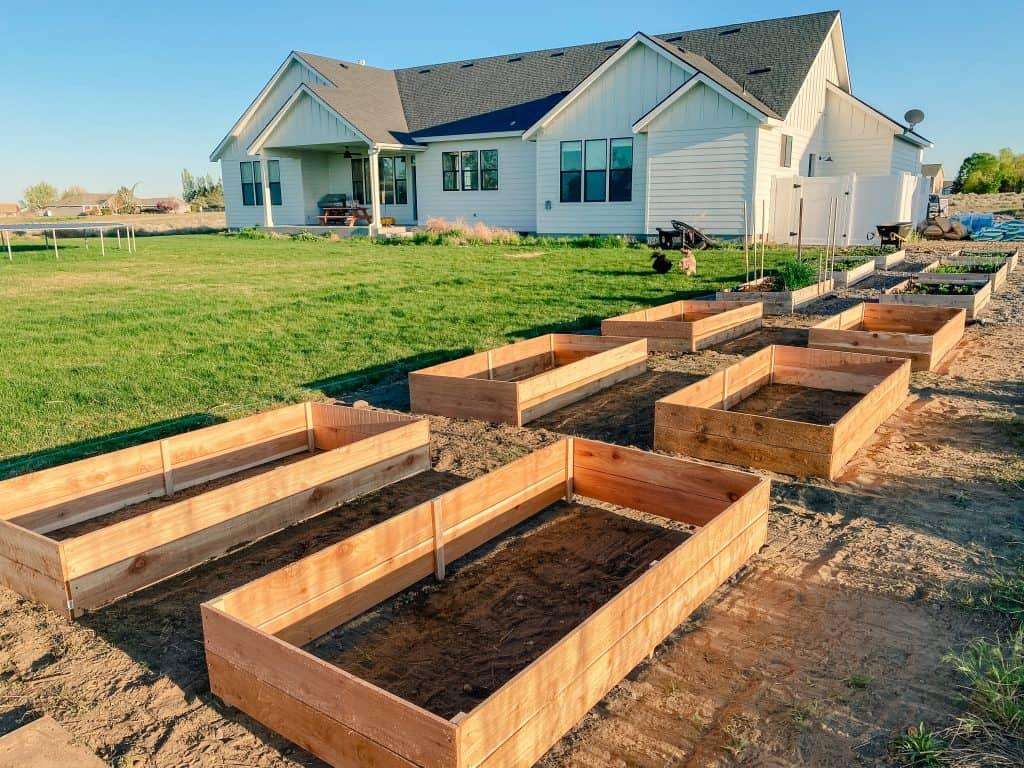 rectangular raised garden beds soil english garden